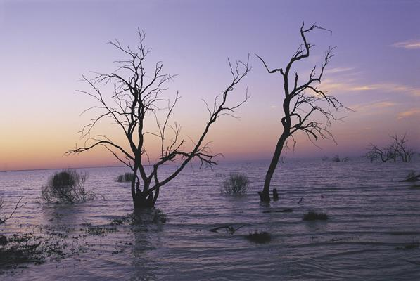 Menindee Lakes - Outback New South Wales: a great place to visit in New South Wales.  Image &copy Destination NSW. This photo sponsored by Contractors Category.