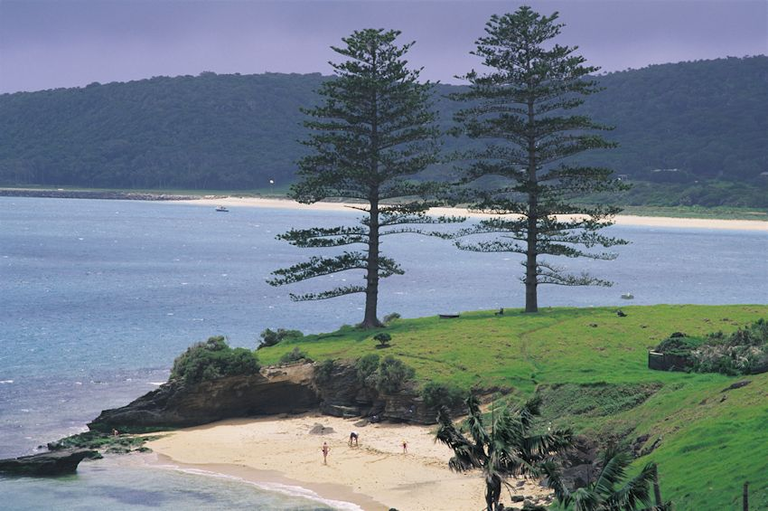 Lovers Bay -Lord Howe Island: a great place to visit in New South Wales.  Image © Don Fuchs; Destination NSW. This photo sponsored by Landscape Design and Service Category.