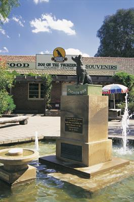 Dog on the Tuckerbox, Gundagai: a great place to visit in New South Wales.  Image © Destination NSW. This photo sponsored by Lawn and Garden Supplies Category.